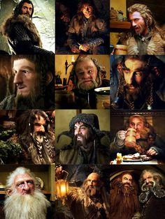 Thorin Oakenshield, Kili, Fili, Ori, Dori, Nori, Bifur, Bofur, Bombur, Balin, Dwalin, Glóin and Óin
