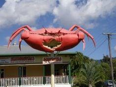 BIG Crab, icons of Australia Aussie Australia, Australia Funny, Australia Travel, Big Crab, Caravan Hire, Australian Icons, Terra Australis, Brisbane Queensland, Land Of Oz