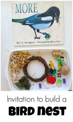 """Invitation to Build a Bird Nest. Great activity based on the book """"More"""" by I. Springman (There are some fantastic lessons here!) If you love arts and crafts you actually will really like this cool website! Nature Activities, Spring Activities, Sensory Activities, Preschool Activities, Steam Activities, Preschool Curriculum, Preschool Printables, Preschool Science, Teach Preschool"""