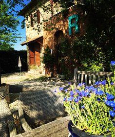 Il Grande Prato #Castelfiorentino #ilgrandeprato #vacanze