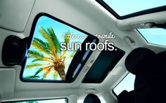 I like to ride around town with my head sticking out of the sun roof :) lol