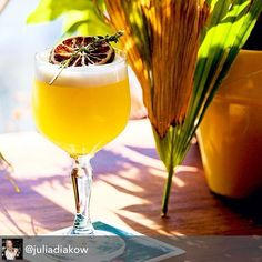 Repost from @juliadiakow because this photo is making us thirsty! Tasty little brunch cocktail for @sovereigncanada \nBreakfast in Brazil 🍹🏄🍊✈\n-  60 ml @novofogo Silver Cachaca | 30 ml lemon juice | 1 large bar spoon of orange marmalade | 1 dash orange blossom water | 1 egg white  #cachaca #cachaça #caipirinha #cocktail #cocktails #bar #bartender #brasil #brazil #mixology #photooftheday  #picoftheday #igers #love #tuesday #lunch #happyhour #tbt