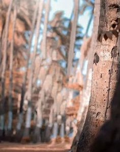2019 new atharv raut background Background Wallpaper For Photoshop, Blur Background In Photoshop, Blur Image Background, Blur Background Photography, Desktop Background Pictures, Banner Background Images, Studio Background Images, Picsart Background, Orange Background