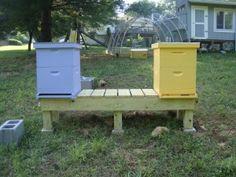 Hive stand