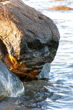 Now this is what you call stone face!