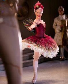 いいね!2,939件、コメント9件 ― The Australian Balletさん(@ausballet)のInstagramアカウント: 「Sydney! Have you got your tickets for Beauty yet? This lavish treat of a production is not to be…」