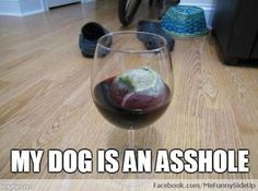 Tennis ball in your wine? You might own a dog. This is soo my dog!!!