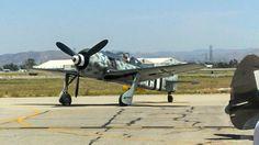 """""""Der Wuerger"""" (""""The Butcher Bird"""") Focke-Wulf FW-190A"""