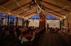 Fairy Light Curtain: Hire Curtain Fairy Lights - Party Lights