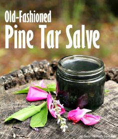 Homemade Old-Fashioned Pine Tar Salve - This stuff is great for drawing out splinters. Some use it to draw out infection too.