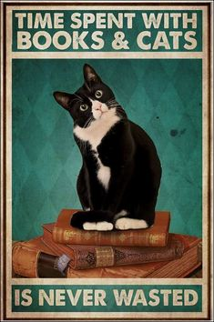 Time spent with books and cats is never wasted poster I Love Cats, Cute Cats, Funny Cats, Crazy Cat Lady, Crazy Cats, Cat Posters, Tier Fotos, Here Kitty Kitty, Cat Quotes