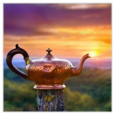 I need this teapot, I wonder where I could get one like it?