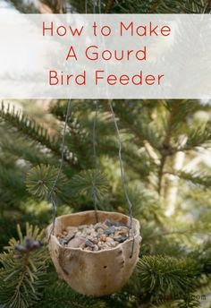 how to make a gourd birdfeeder