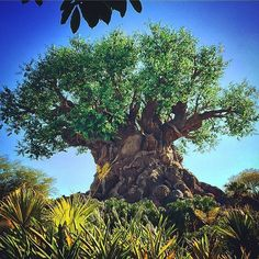 Pin for Later: 39 Disney World Facts That Even Die-Hard Fans Don't Know The Tree of Life is 14 stories tall. It's also a whopping 50 feet wide. Disney World Facts, Disney Facts, Walt Disney World, Disney Universal Studios, Life Run, Tomorrow Is Another Day, Believe In Miracles, Tree Of Life, Disneyland
