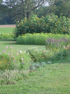 More beautiful gardens