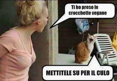 Vegani animali
