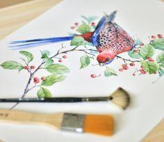 Crimson Rosella by Natalia Tyulkina, via Behance