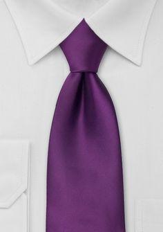 Solid Tie in Bright Purple