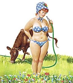 Hilda - checking out water hose, cow standing on it