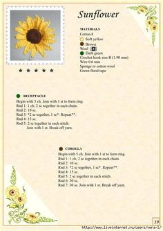 The Book of Crochet Flowers 1_44 (494x700, 235Kb)