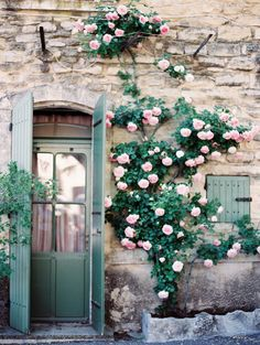 Pretty pink penoies crawling over a brick house, cute country home