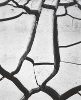 Mud Cracks, Ansel Adams