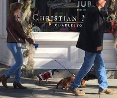 ***Here is a duck on a leash wearing a Santa suit with a wiener dog in Charleston, SC.