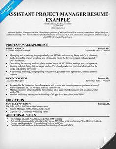 11 project management resume sample riez sample resumes - Project Manager Resume Examples
