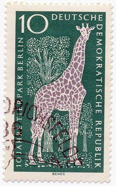 1965 German Stamp - Giraffe