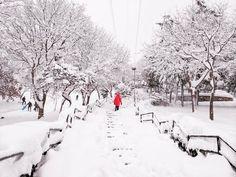Bence İstanbul'un güzelliği en çok kar yağdığında ortaya çıkıyor.  Bu  güzel anı da #AsusZenfone3 ile manuel modda yakaladım  #Sehirde24saat