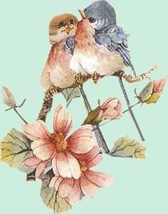 Funny Birds, Cute Birds, Spring Pictures, Pretty Pictures, Blue Bird Art, Bird Applique, Christmas Bird, Bird Crafts, China Painting