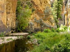Sedona, AZ: West Clear Creek. Immerse yourself (literally) in the crystal clear waters of the Coconino National Forest on this multi-day amphibious trek that features classic—and unavoidable—canyon swims.
