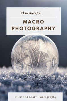 Macro photography can be one of the most rewarding genres of photography, but there are some entry requirements if you want to capture that hidden world and here we detail the 5 most essential pieces of macro photography gear. #photography #photographygear #macro #macrophotography #cameras Learn Photography, Photography Gear, Photography Equipment, Macro Photography, Amazing Photography, Street Photography, Landscape Photography, Portrait Photography, Essentials