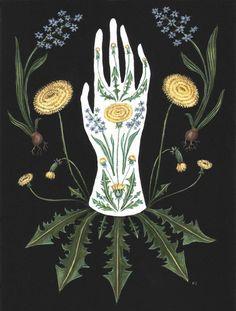 Art Inspo, Kunst Inspo, Art And Illustration, Arte Floral, Motif Floral, Art Et Nature, Inspiration Artistique, Illustration Botanique, Ouvrages D'art