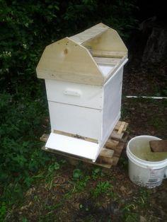 Bee hive at 75%
