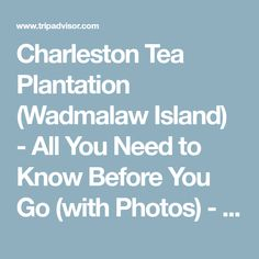 Charleston Tea Plantation (Wadmalaw Island) - All You Need to Know Before You Go (with Photos) - TripAdvisor