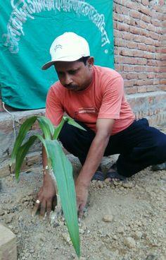 4 मार्च 2016 को 279 वे दिन लगातार पौध रोपण के क्रम में जे.पी.पुरम् कॉलोनी पटेल नगर  अनगढ़  मिर्ज़ापुर में अनुराग जी के प्लाट में सुदर्शन  के पौध का रोपण अनिल कुमार सिंह,संस्थापक/सचिव-खेल क्रान्ति अभियान/पर्यावरण शुद्धिकरण अभियान,प्रवक्ता-शान्ति निकेतन इण्टर कॉलेज पचोखरा,मिर्ज़ापुर द्वारा किया गया।