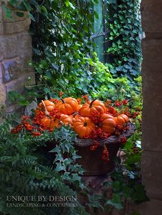 Many Mini Pumpkins l Unique by Design