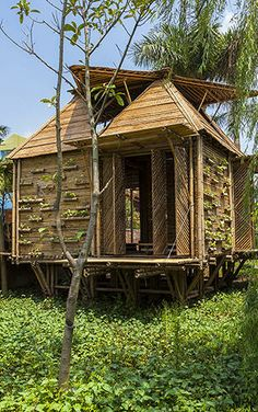 Bamboo houses look amazing and they are extremely eco-friendly too. Wouldn't it be fantastic if you could live in a Bamboo house in a tropical paradise? Water Architecture, Architecture Design, Bamboo House Design, Bahay Kubo, Weather Storm, Concept Home, Floating House, Home Pictures, Tiny House