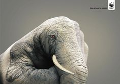 Public Awareness Ads That Makes You Think