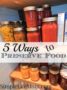 5 Ways to Preserve Food #Caning, #Drying, #Fermentation, #FoodPreservation, #Freezing, #Methods, #Recipes, #ShrinkWrap #FoodStorageandPreservation