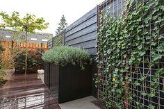 Landscape Gardening Newark On Trent Japanese Garden Design, Backyard Privacy, Front Yard Fence, Cool Landscapes, Landscape Lighting, Garden Inspiration, Garden Landscaping, Outdoor Living, Patio