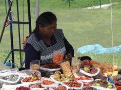 Sementes, vagens e insetos à venda na feirinha do Cholula, no México...