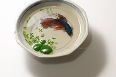 Chai Soong Ng Octagonal bowl and Red Betta (Acrylic on Resin)