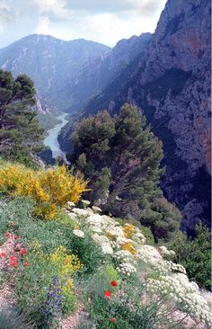 Verdon Gorge, Provence, France (scheduled via… Places Around The World, Around The Worlds, Beautiful World, Beautiful Places, Ville France, Provence France, All Nature, French Countryside, South Of France