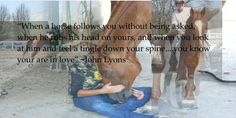 wonderful horse quote