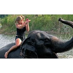 Go on an elephant trek (and swim with them!) in Koh Chang, Thailand. Did this in Koh Chang. Elephant Trekking, Elephant Ride, Thai Elephant, Elephant Shower, Oh The Places You'll Go, Places To Visit, Best Bucket List, Thailand Elephants, Koh Chang