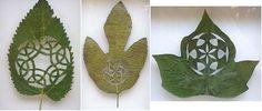 Increíbles diseños artísticos tallados sobre hojas de arboles | Rincón Abstracto