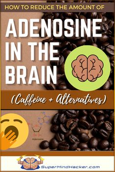 Best Nootropics, Constantly Tired, Brain Tricks, Holistic Nutrition, Blended Coffee, Brain Health, Caffeine, B12 Deficiency, Productivity
