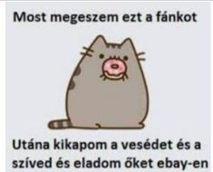 Pusheen Cute, Shes Amazing, Grumpy Cat, Funny Moments, Charlie Brown, Haha, Comedy, Funny Pictures, Hilarious